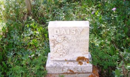 Daisy Stark's headstone, Como, CO cemetery
