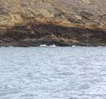 Snorkling area at Molokini