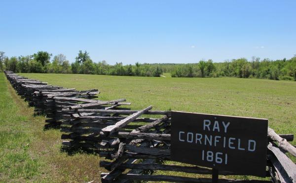 Ray Cornfield