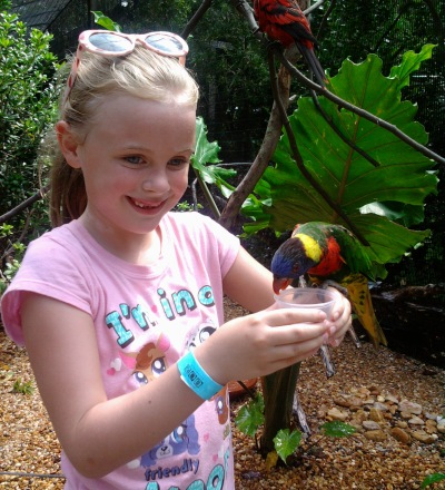 Feed the Lorakeets at the Jacksonville Zoo