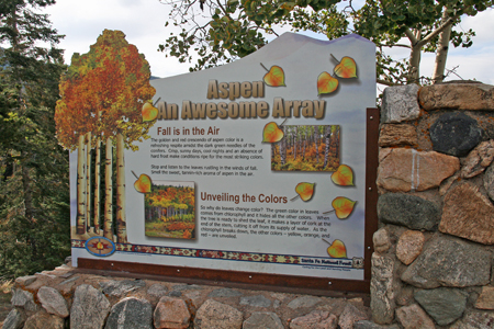Aspen Vista Picnic Area