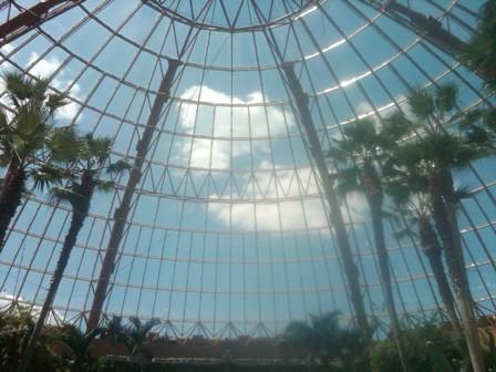 Inside the bubble at Harrah's
