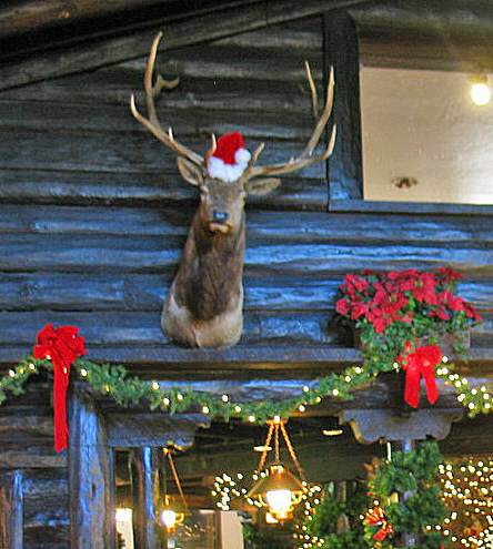 El Tovar Lodge decorated for Christmas - Grand Canyon
