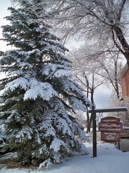 Flagstaff Arizona in Winter